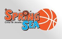 bannerino springsea