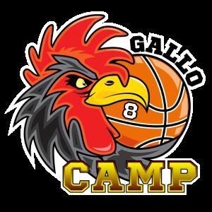 GalloCamp